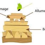 Comment allumer un poele a bois